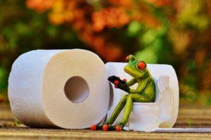 frog-1037247_1280