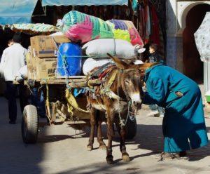 morocco-1814744_1280