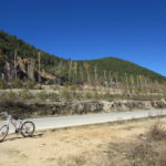 調子に乗ってナパ海周りをサイクリング:シャングリラ