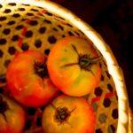 美味い料理 vs 素朴なホームステイ:アンティグア